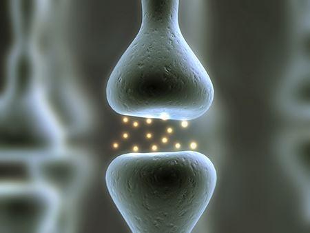 ประโยชน์ของ Astaxanthi (7)