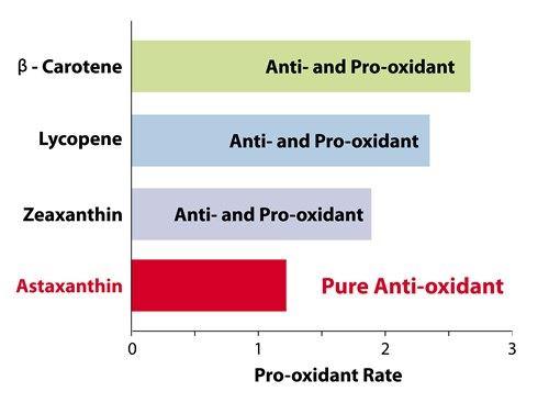 Astaxanthin ไม่ทำให้เกิดโปรออกซิแดนซ์